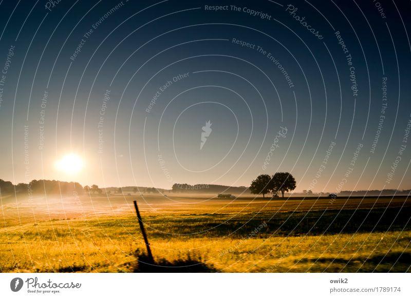 Ging ja noch mal gut Umwelt Natur Landschaft Pflanze Erde Luft Wolkenloser Himmel Horizont Herbst Klima Schönes Wetter Baum Gras Sträucher Feld Wald Autofahren