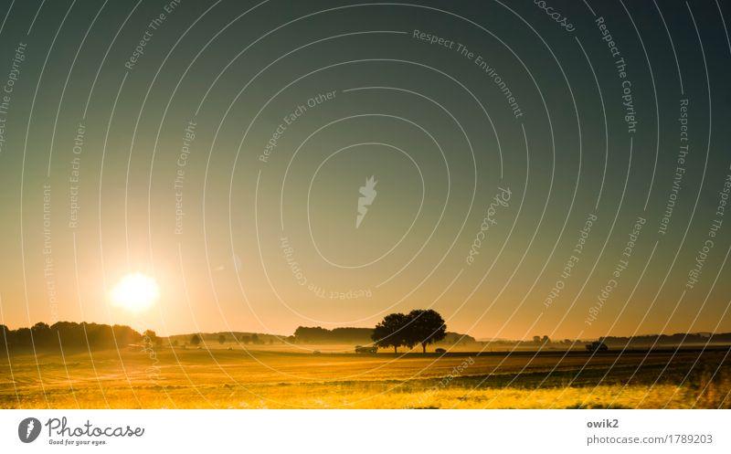 Unfallschwerpunkt Umwelt Natur Landschaft Pflanze Erde Luft Wolkenloser Himmel Horizont Herbst Klima Schönes Wetter Feld Wald Autofahren Straße PKW Lastwagen