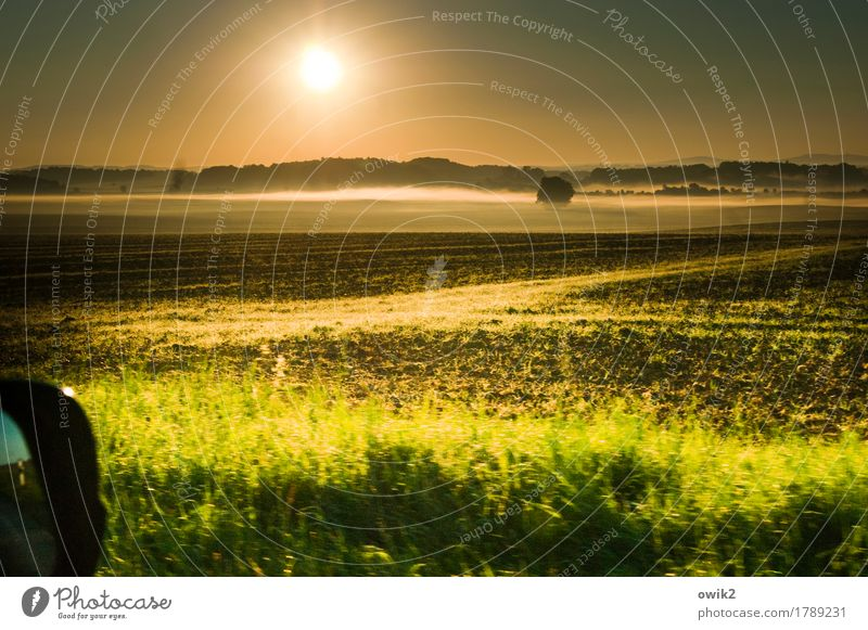 Tour Umwelt Natur Landschaft Pflanze Urelemente Erde Wolkenloser Himmel Horizont Herbst Klima Schönes Wetter Nebel Baum Gras Sträucher Feld Wald Autofahren