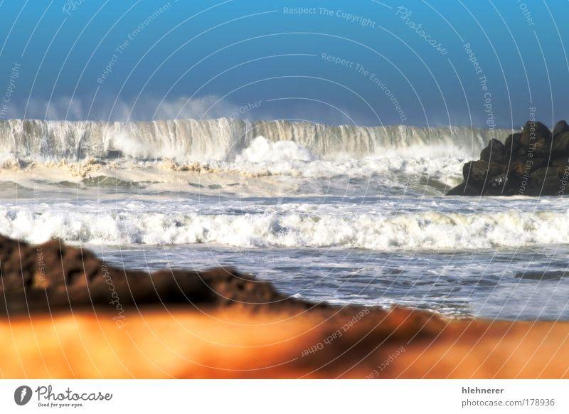 Natur alt weiß Baum Meer blau Küste Wellen Hintergrundbild Umwelt natürlich Leidenschaft Brandung Gezeiten verwittert Konsistenz