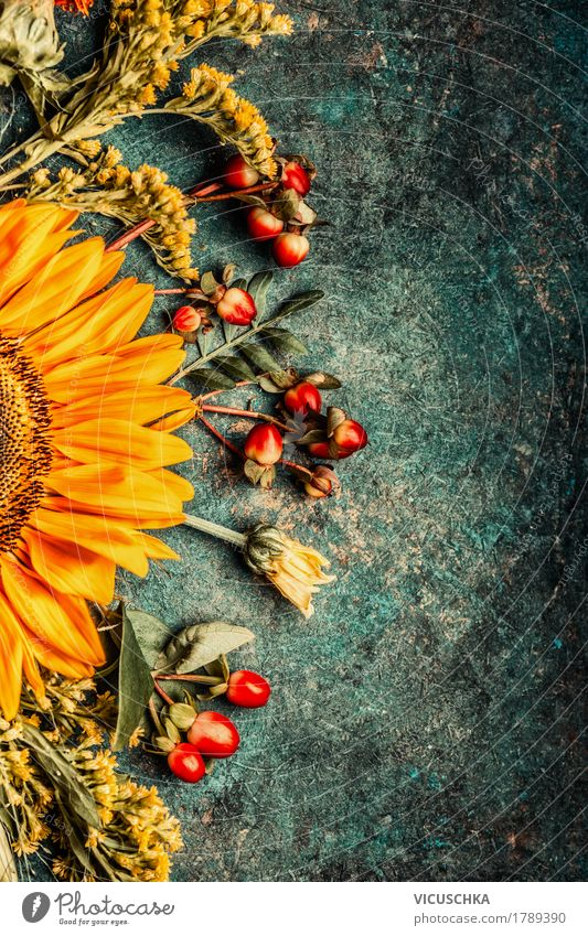 Herbstblumen Pflanze Sommer Blume Blatt gelb Blüte Innenarchitektur Stil Design Dekoration & Verzierung Blumenstrauß Stillleben altehrwürdig Sonnenblume