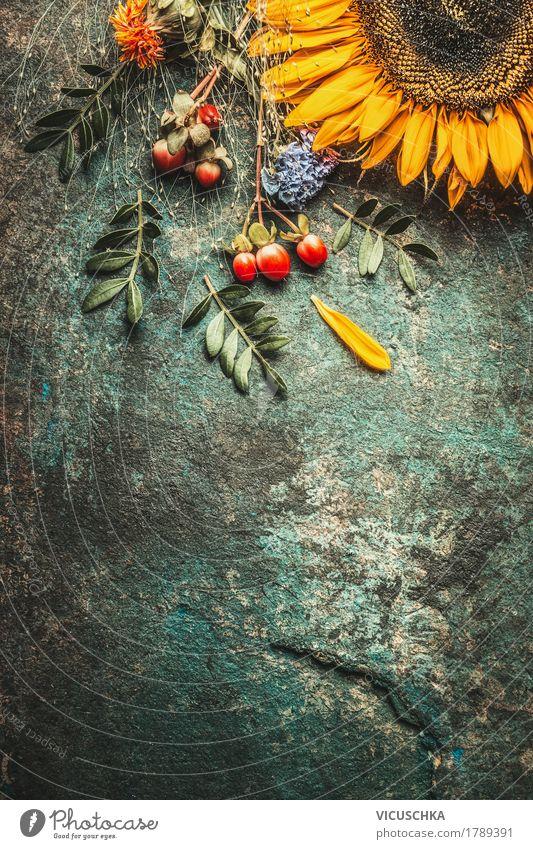 Herbstblätter und Sonnenblume Natur Pflanze Sommer Blume Blatt gelb Leben Blüte Stil Design Dekoration & Verzierung Blumenstrauß Beeren Stillleben altehrwürdig