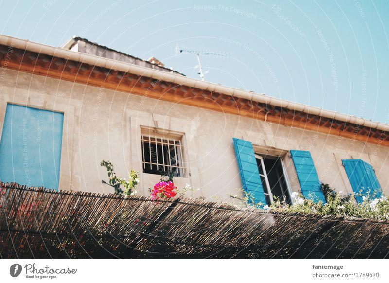 maison arlésienne Stadtzentrum Gebäude Architektur Mauer Wand Fenster türkis Süden südländisch Südeuropa Arles Südfrankreich Mittelmeer mediterran Blume Fassade