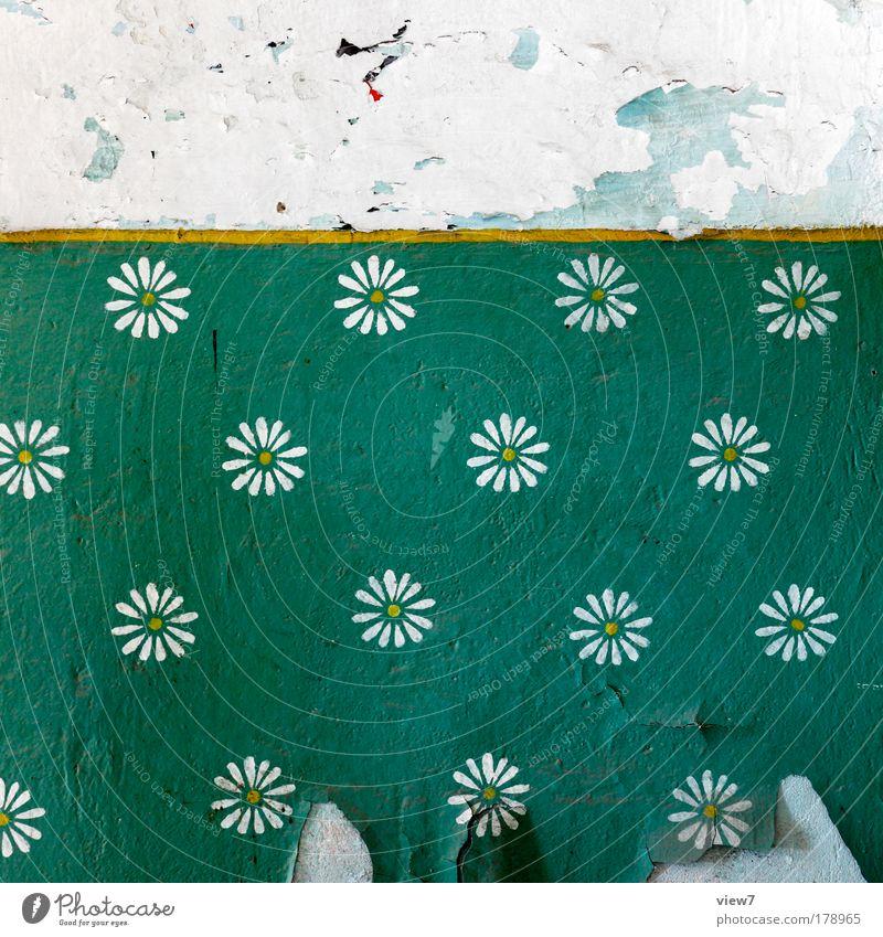 Blumenwiese Farbfoto mehrfarbig Innenaufnahme Detailaufnahme Menschenleer Textfreiraum oben Starke Tiefenschärfe Wohnung Renovieren Umzug (Wohnungswechsel)