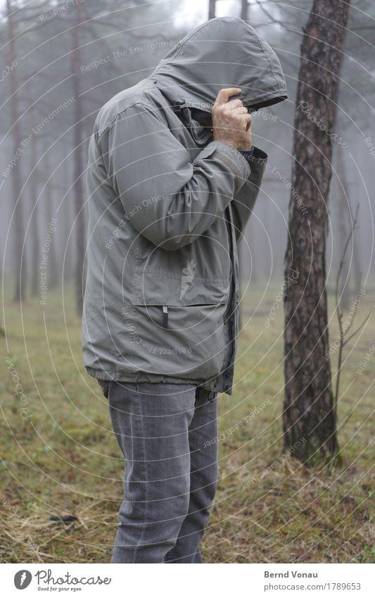 ungern Mensch maskulin 1 45-60 Jahre Erwachsene kalt Wetter Herbst grau Wald Bekleidung Jacke Kapuze Wetterschutz verstecken Kiefer Wegsehen Spaziergang