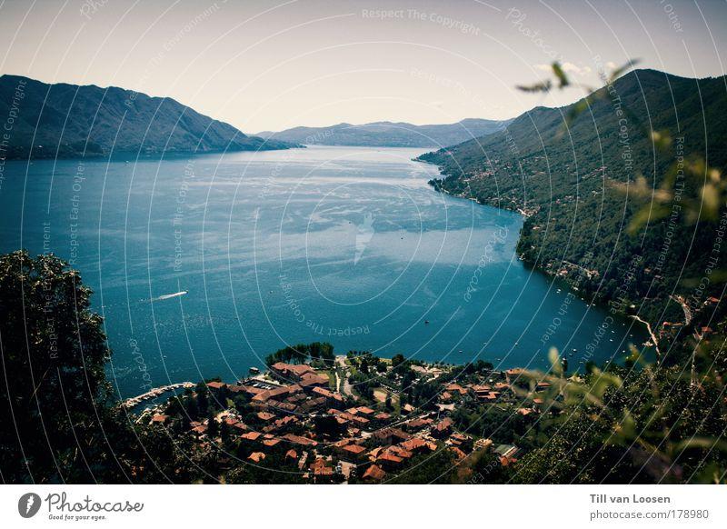 Lago Maggiore Natur Wasser blau grün rot Ferien & Urlaub & Reisen Sommer Haus Erholung Landschaft Berge u. Gebirge See Wasserfahrzeug Kanton Tessin Schweiz