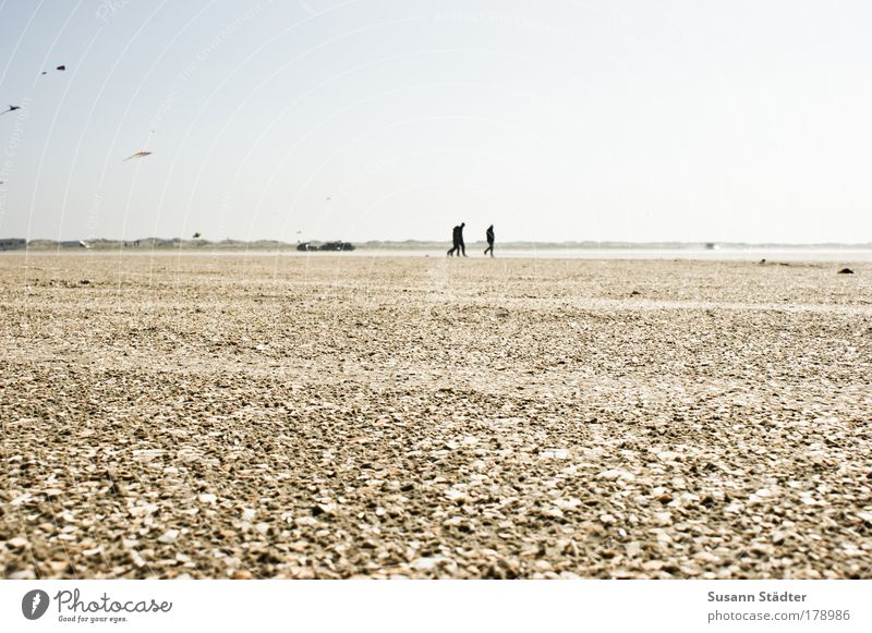 Käferperspektive Mensch Strand ruhig Ferne Erholung Landschaft kalt Freiheit Sand Küste Stein hell Horizont Erde laufen Ausflug
