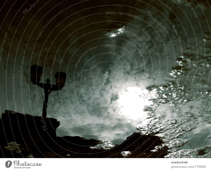 es ist deine zeit Unterwasseraufnahme Abend Dämmerung Nacht Schatten Kontrast Silhouette Reflexion & Spiegelung Gegenlicht Umwelt Klima Klimawandel