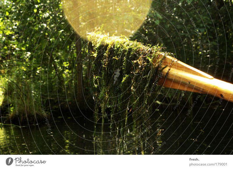 Alles in Butter auf'm Kutter... Natur Wasser Pflanze Sonne Sommer Freude Erholung Leben Freiheit Glück Zufriedenheit Ausflug leuchten Sträucher Fluss Schönes Wetter