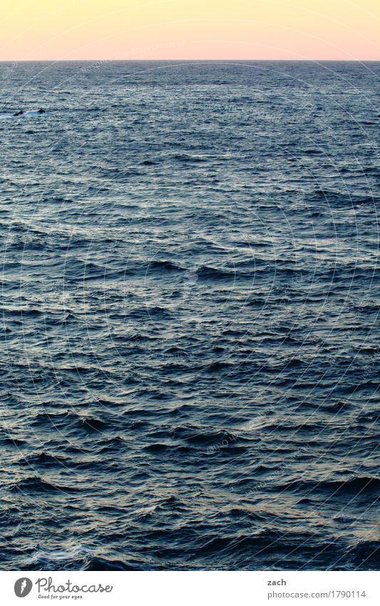 monoton | bis zum Horizont Wasser Himmel Sonnenaufgang Sonnenuntergang Schönes Wetter Wellen Küste Meer Schifffahrt Bootsfahrt Schwimmen & Baden Unendlichkeit