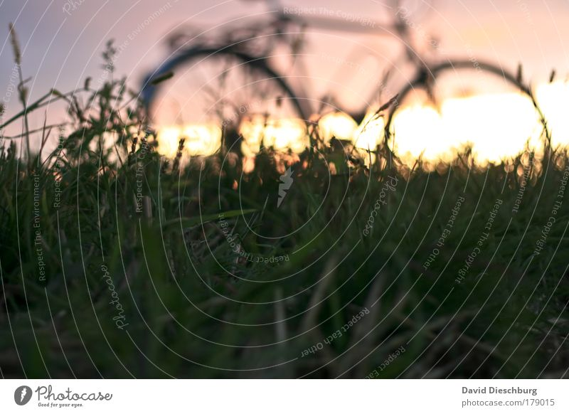 Absteigen + den Moment genießen Farbfoto Strukturen & Formen Morgen Morgendämmerung Tag Abend Dämmerung Licht Kontrast Silhouette Sonnenlicht Gegenlicht