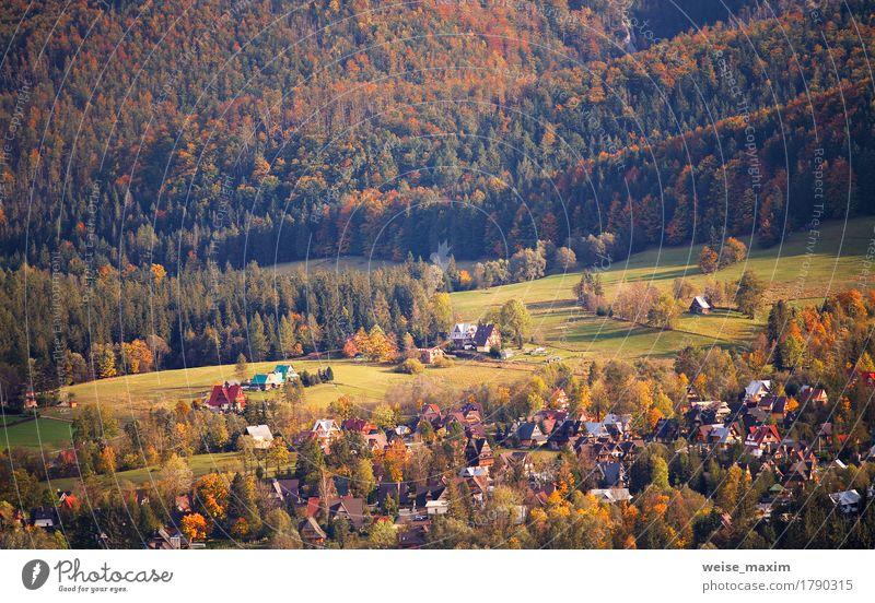 Sonniger Oktober-Tag in Malopolska-Bergdorf Natur Ferien & Urlaub & Reisen Pflanze grün Baum Landschaft rot Haus Wald Berge u. Gebirge Straße gelb Wiese Herbst