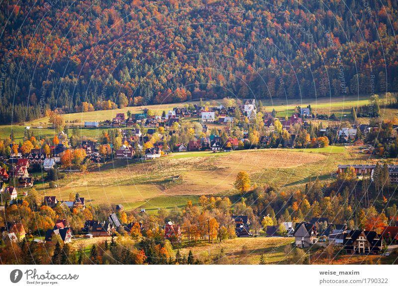 Sonniger Oktober-Tag in Malopolska-Bergdorf Ferien & Urlaub & Reisen Tourismus Berge u. Gebirge Haus Natur Landschaft Pflanze Herbst Baum Gras Wiese Wald Hügel