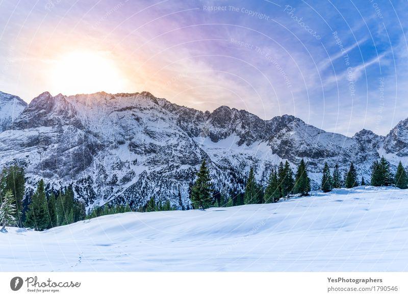 Schneebedeckte Berggipfel Freude Ferien & Urlaub & Reisen Winter Winterurlaub Berge u. Gebirge Silvester u. Neujahr Landschaft Wetter Eis Frost Baum Alpen