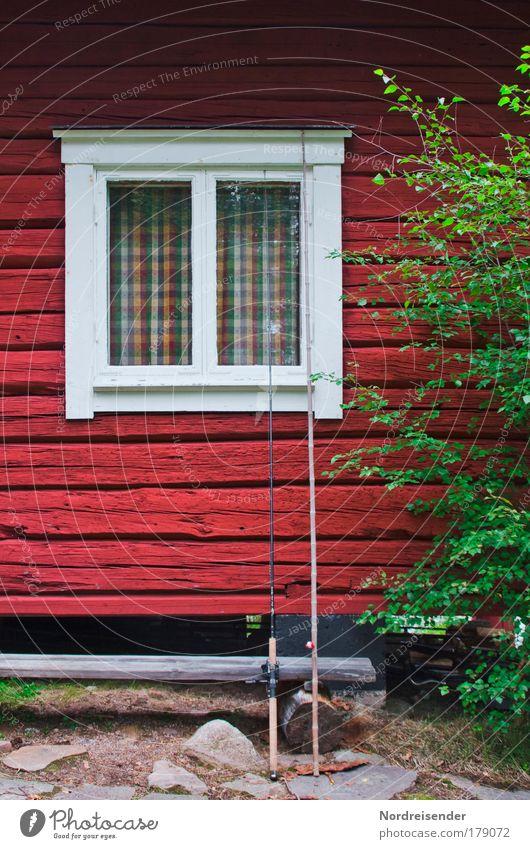 60° Nord Natur Baum rot Ferien & Urlaub & Reisen Erholung Fenster Freiheit Holz Architektur Wärme Fassade natürlich Romantik Warmherzigkeit Jagd Hütte
