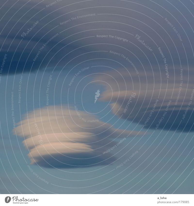 traumwolken Himmel Natur blau weiß schön Wolken Umwelt Bewegung Luft träumen Wetter natürlich Klima außergewöhnlich Wassertropfen einzigartig