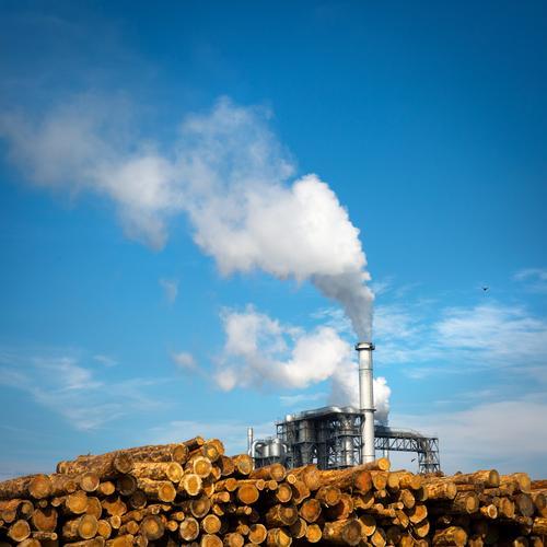 Einheizen Himmel blau Baum Wolken Wärme gelb Holz außergewöhnlich Energiewirtschaft Erfolg Klima Schönes Wetter Industrie Landwirtschaft Baumstamm