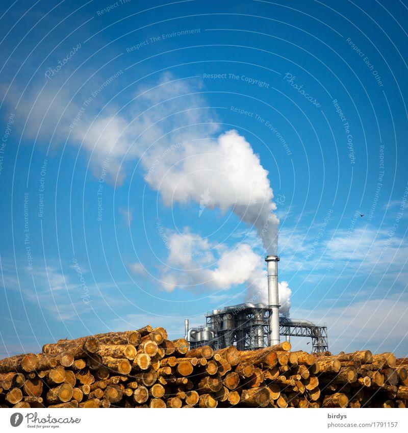 Einheizen Wirtschaft Landwirtschaft Forstwirtschaft Industrie Energiewirtschaft Erneuerbare Energie Himmel Wolken Schönes Wetter Baum Industrieanlage Rauchen