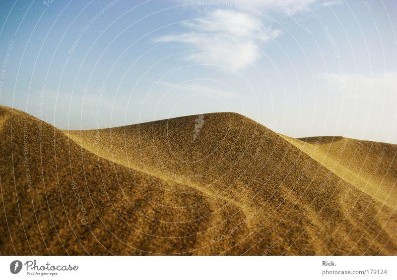 .Mini-Dünen Natur Himmel Sommer Strand Ferien & Urlaub & Reisen ruhig Wolken Erholung Wärme Sand Landschaft Wellen Wind Wetter Umwelt Energie