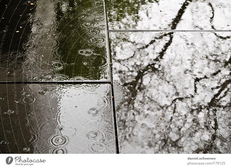 Hallo Herbst Gedeckte Farben Kontrast Silhouette Reflexion & Spiegelung Wasser Wassertropfen schlechtes Wetter Regen Traurigkeit