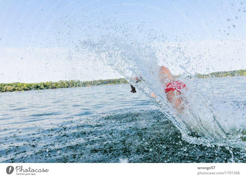 Große Welle Sport Sportler Sportveranstaltung Triathlon Schwimmen & Baden See Mensch maskulin Junger Mann Jugendliche 1 18-30 Jahre Erwachsene rennen laufen