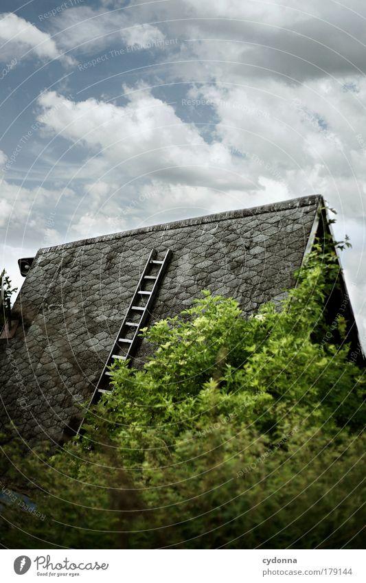 Himmelsleiter Himmel Natur Baum Ferien & Urlaub & Reisen Haus Umwelt Leben Freiheit Architektur Garten träumen Perspektive Zukunft Hoffnung Dach einzigartig