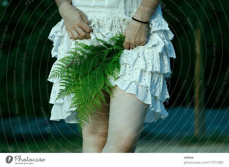 Farne Frau Beine weiß Kleid Pflanze verstecken dünn Rüschen Erotik Hand grün Stil Natur Knie selbstbewußt Witz Hochzeit Junge Frau Beautyfotografie