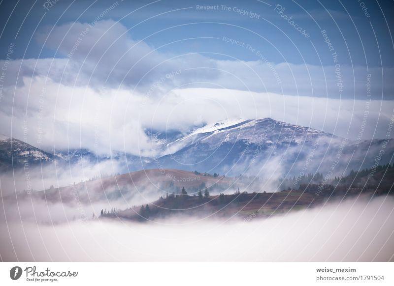 Herbst, November nebligen und verschneiten Morgen in Bergen Himmel Natur blau grün schön weiß Baum Landschaft Wolken Wald Berge u. Gebirge Umwelt Wiese