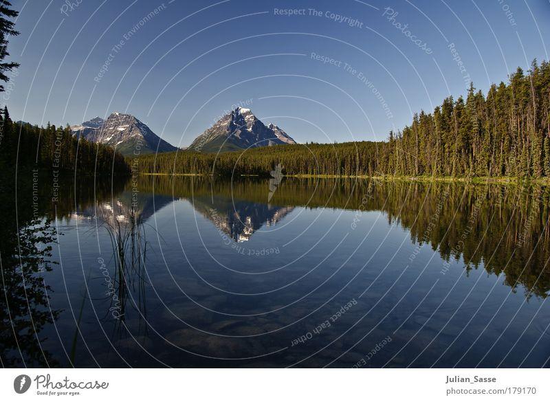 Gespiegelt Umwelt Natur Landschaft Pflanze Urelemente Sand Wasser Himmel Wolkenloser Himmel Horizont Sonne Sommer schön See Berge u. Gebirge Wald Tanzen