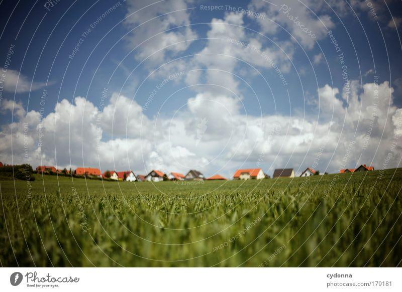 Schöner Wohnen Natur schön Haus ruhig Umwelt Landschaft Leben Wiese Freiheit träumen Energie Beginn Baustelle Perspektive Häusliches Leben Zukunft