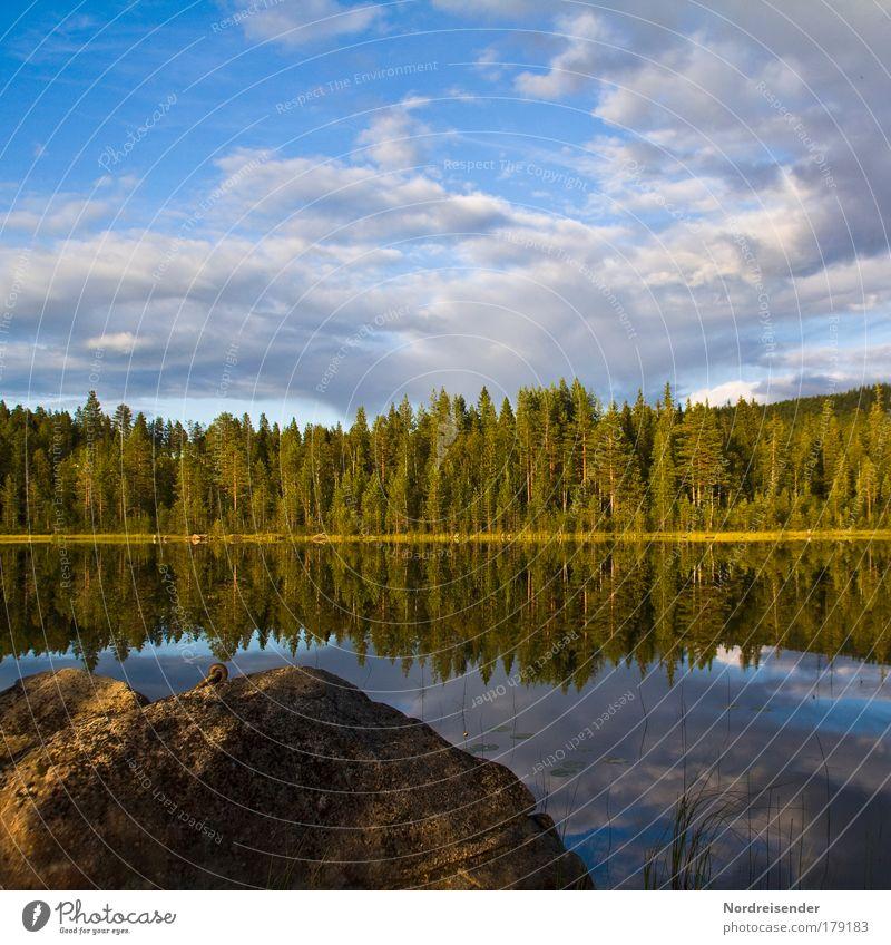 60° Nord Abendsonne Himmel Natur schön Sommer Ferien & Urlaub & Reisen ruhig Wald Freiheit träumen Stimmung See Insel frisch natürlich Romantik Sehnsucht