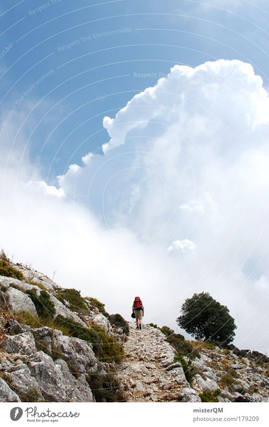 Stairway to Heaven. Himmel Natur Ferien & Urlaub & Reisen Wolken Einsamkeit Landschaft Berge u. Gebirge Kraft wandern hoch Abenteuer Wege & Pfade Erfolg Ziel