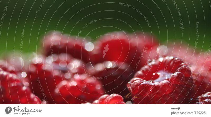 Ansammlung grün rot Ernährung Gesundheit Frucht frisch natürlich Beeren Ernte Bioprodukte Lebensmittel Himbeeren fruchtig Vegetarische Ernährung