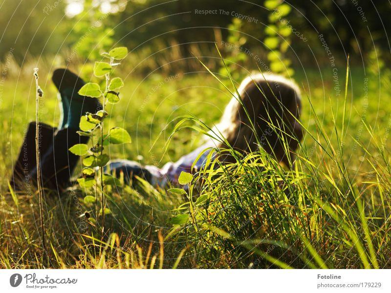 Traum vom Sommer Natur Pflanze Sonne Mädchen Sommer Blatt Erholung Umwelt Wiese Landschaft Kind Gras Wärme Haare & Frisuren Garten Beine