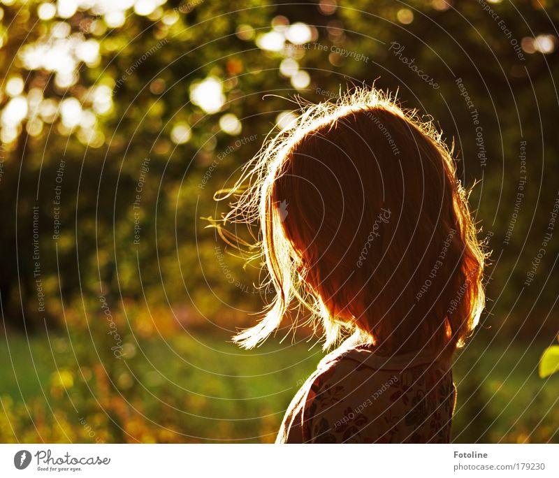 Leonie Kind Natur Baum Pflanze Mädchen Blatt Wald Umwelt Wiese Landschaft Bewegung Gras Kopf Haare & Frisuren Garten träumen