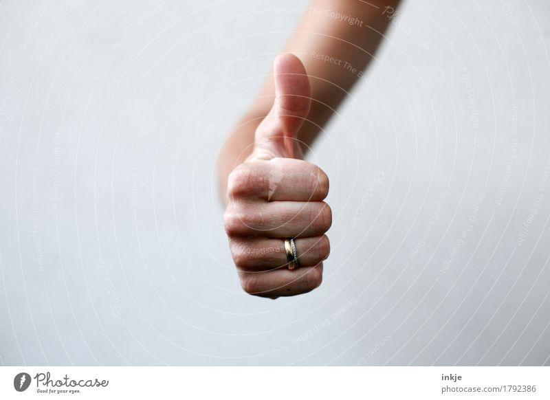 Daumen hoch ! Lifestyle Freizeit & Hobby Hand 1 Mensch Kommunizieren Erfolg positiv Gefühle Stimmung Zufriedenheit Begeisterung Optimismus Tatkraft loyal
