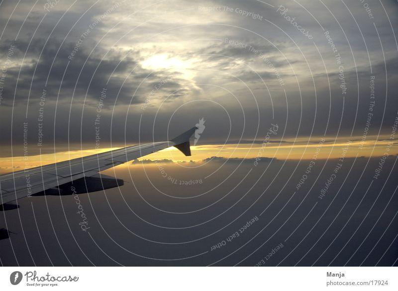 Dem Himmel so nah Flugzeug Wolken Luftverkehr Sonne