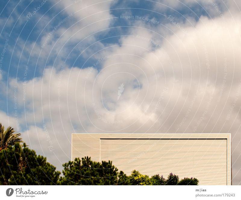 Kniffel unter Palmen Ferien & Urlaub & Reisen Wolken Haus Stil Kraft elegant Fassade Hochhaus Erfolg Tourismus ästhetisch Lifestyle Sicherheit Kultur