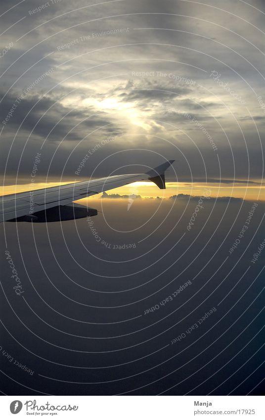 dem Himmel so nah Sonne Wolken Flugzeug Luftverkehr