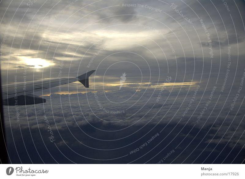dem Himmel so nah Himmel Wolken Flugzeug Luftverkehr