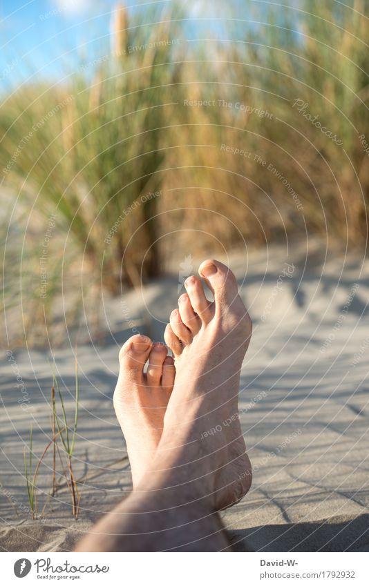 Füße hoch Mensch Natur Ferien & Urlaub & Reisen Jugendliche Mann Sommer Sonne Junger Mann Erholung ruhig Strand Erwachsene Umwelt Leben Gesundheit Fuß