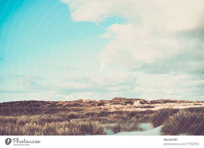 Nordseeinsel Behandlung Wellness Leben harmonisch Wohlgefühl Erholung ruhig Ferien & Urlaub & Reisen Tourismus Ausflug Abenteuer Ferne Freiheit Sommer