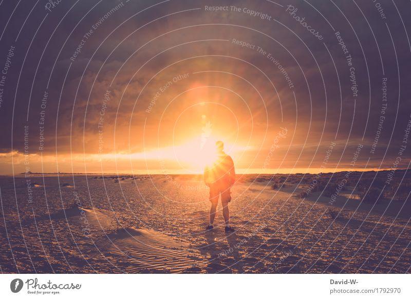 Momente die man nicht vergisst Mensch Ferien & Urlaub & Reisen Jugendliche Mann Sommer schön Junger Mann Sonne Erholung ruhig Ferne Strand Erwachsene Leben