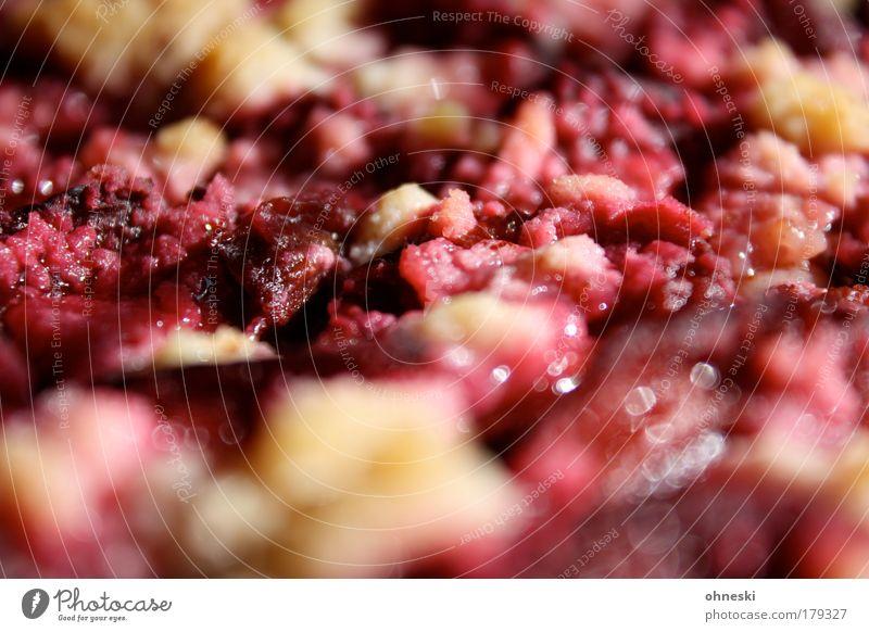 Pflaumenkuchen? Wärme Frucht glänzend Lebensmittel Ernährung süß genießen Kuchen saftig Backwaren füttern Teigwaren Slowfood Kaffeetrinken