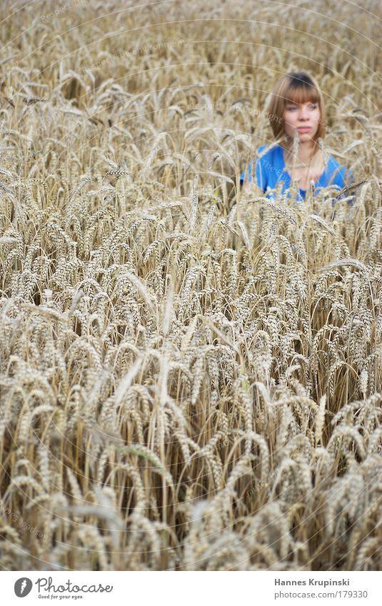 schlecht versteckt Erntedankfest Mensch feminin Junge Frau Jugendliche 1 18-30 Jahre Erwachsene Schönes Wetter Korn Feld blond kurzhaarig beobachten Denken