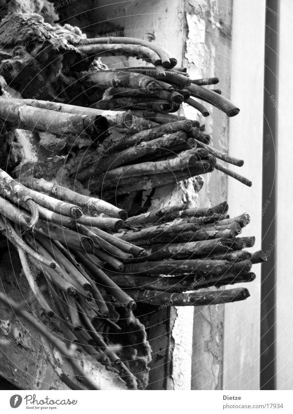 glimmstängel Industrie Kabel Schwarzweißfoto