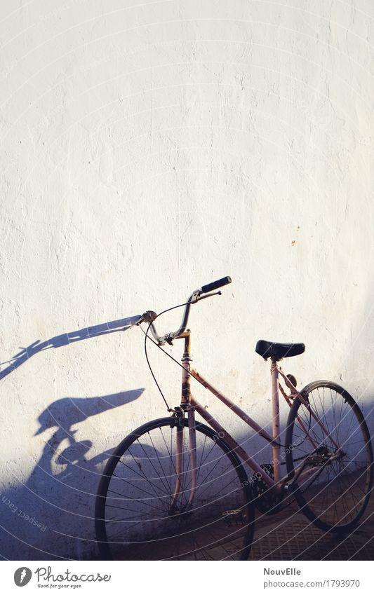 Unterwegs in Argentinien Fahrrad Schatten Street Reisender Abendstimmung