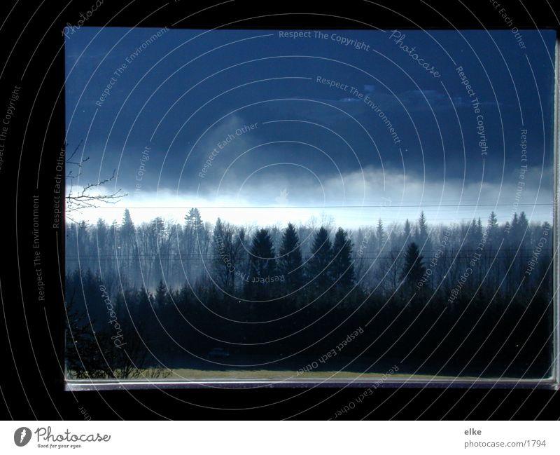 durchdasfenster Baum Wald Fenster Gras Berge u. Gebirge