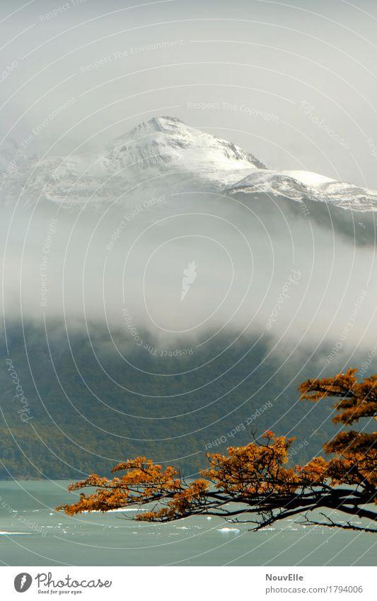 Unterwegs in Patagonien Perito Moreno Gletscher Argentinien reisen Berge u. Gebirge Herbst Nebel