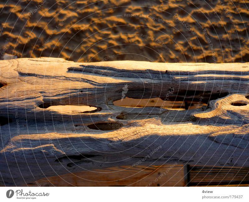 Strand gut! Natur alt Ferien & Urlaub & Reisen gelb Erholung Holz Denken Sand braun Wind Umwelt Gelassenheit entdecken Fußspur Terrasse